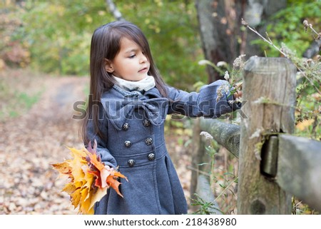 Little pretty girl with autumn leaves in an autumn park - stock photo