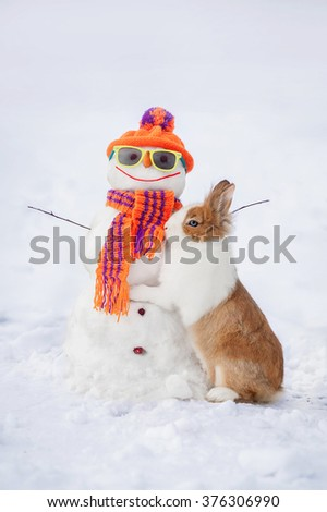 Little rabbit with funny dressed snowman