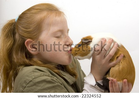 little red head girl is kissing with a guinea pig - stock photo