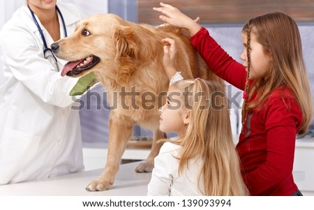 Little sisters and dog at veterinary surgeon, vet examining dog. - stock photo
