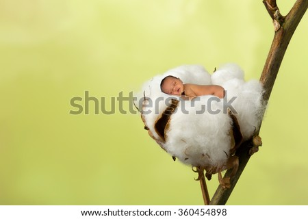 Little sleeping newborn baby photoshopped into a soft cotton ball - stock photo