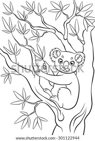 Little smiling cute koala sitting in the tree - stock photo