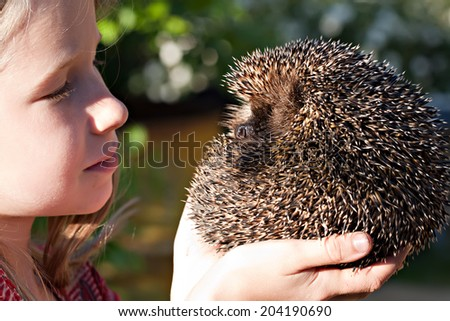 little smiling girl with cute European  hedgehog ball in hands, two profile view - stock photo