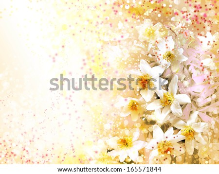 Little spring white flowers closeup on abstract spring background - stock photo