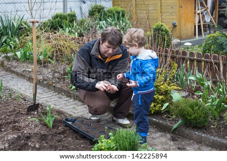 Little toddler boy and his father planting seeds in vegetable garden