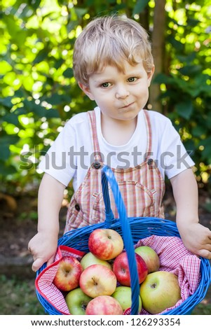Little toddler boy with apple basket on summer day
