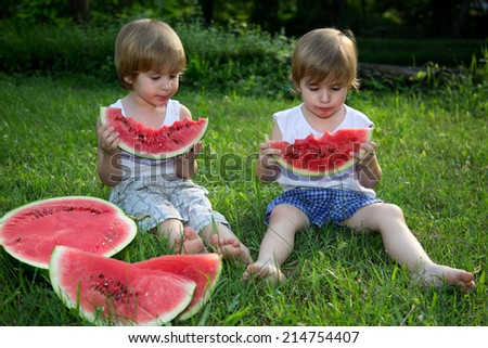 Little Twin Brothers Eating Watermelon on Green Grass in Summer Park