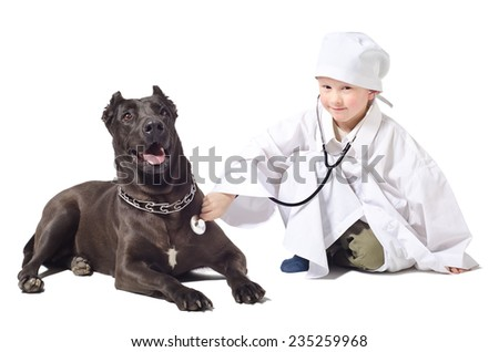 Little  vet listens to a stethoscope dog  - stock photo