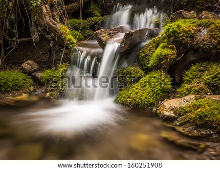 little waterfall in the forest - stock photo