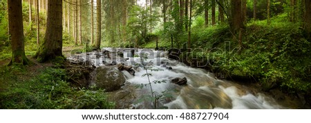 Little waterfall in the forest,Austria,Neumarkt