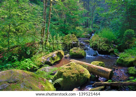 little wild Creek in Wutachschlucht Valley, Black Forest, Germany - stock photo