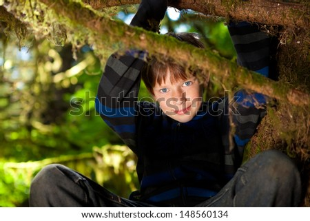 Little 10 year old boy sitting in a tree smiling - stock photo