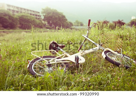 Little yellow bicycle standing on green meadow