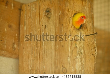 Little yellow parrot sits in a hollow - stock photo