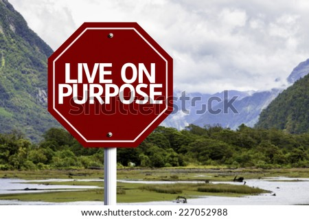 Live On Purpose written on red road sign with landscape background - stock photo