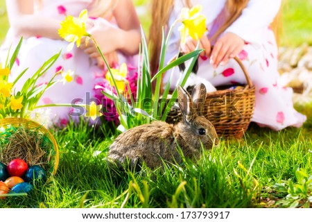 Living Easter bunny with eggs in a basket on a meadow in spring, children in the background