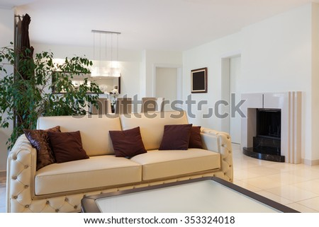 living room of a modern apartment, leather divan - stock photo
