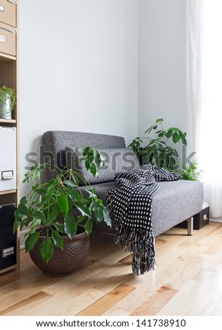 Living room with comfortable armchair, bookcase and green plants. - stock photo