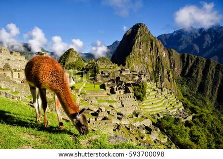 Gratis Peru dating