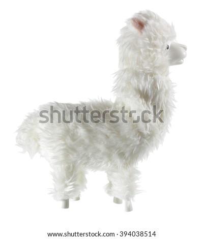 Llama on White Background - stock photo