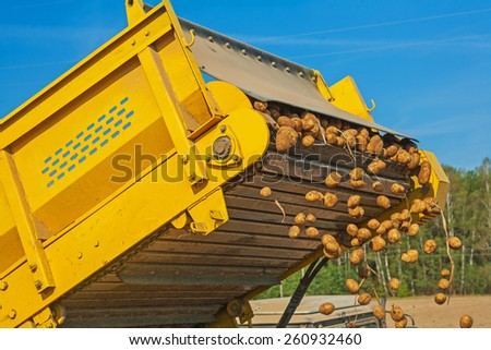 loadding of potato in harvest close up view on part machine  - stock photo