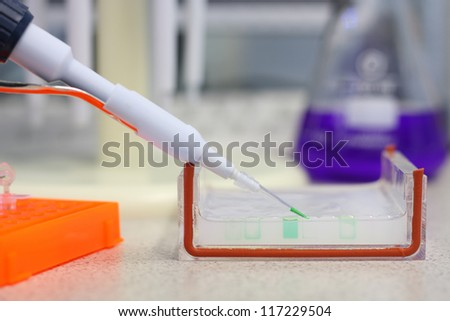 Loading a sample into a gel for electrophoresis - stock photo