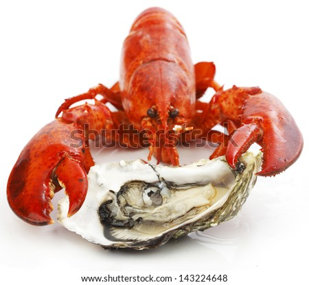Lobster and oyster isolated on white background - stock photo