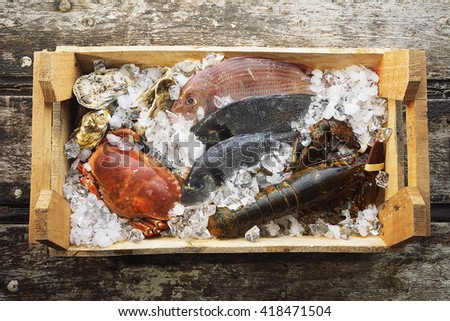 Lobster, oysters, crab and fish on ice - stock photo