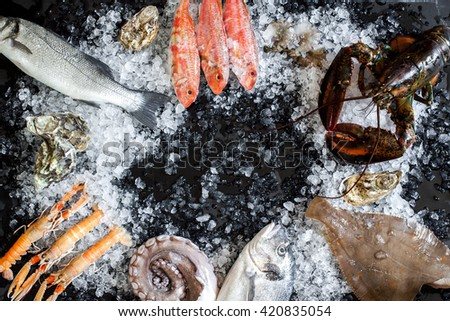 Lobster, Red mullet, seabass,octopus, place, seabream and oysters on black background - stock photo