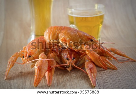 lobster with beer - stock photo