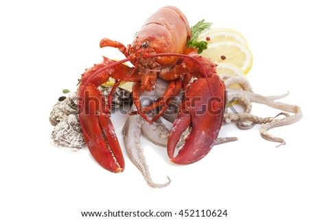 Lobster with oysters and squid on a white background. - stock photo