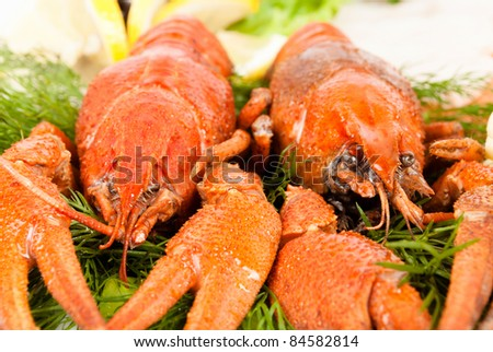 lobsters with salad - stock photo