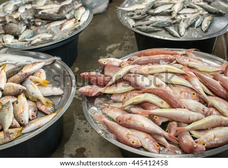Traditional cypriot fish meze appetizer stock photo for Local fish market
