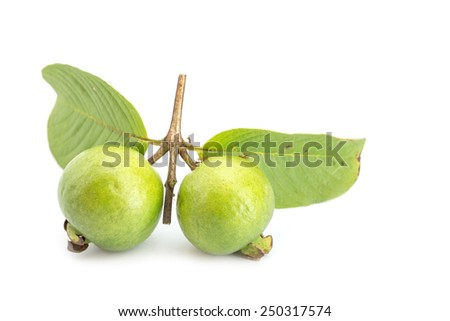Local Thai green guava isolated on white background - stock photo