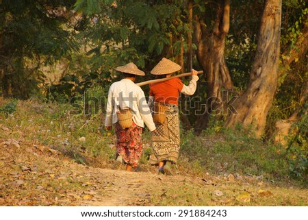 Local village women return home in the evening after working in their fields,  Hsipaw,  Myanmar (Burma)