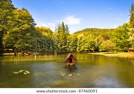 Located in the highlands of artificial lake (located in the mountains Korpaty, near the castle of Schoenberg, Ukraine, autumn time of year) - stock photo