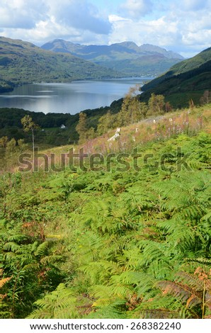 Loch Lomond from the lower slopes of Ben Lomond, Scotland - stock photo