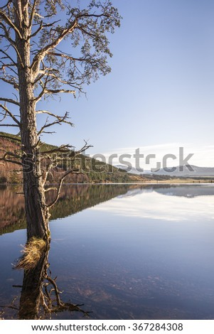 Loch Pityoulish in The Cairngorms. - stock photo