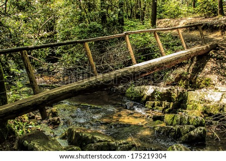 Log and wood bridge crossing a small creek