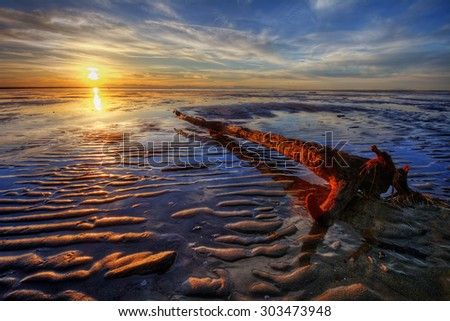 Log left by the beach - stock photo