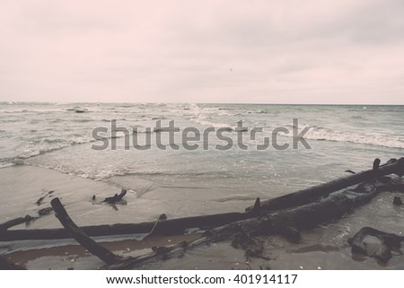 Log on the beach of Baltic sea (Selective focus) - vintage film effect