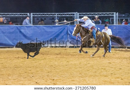 LOGANDALE , NEVADA - APRIL 10 : Cowboy Participating in a Calf roping Competition at the Clark County Fair and Rodeo a Professional Rodeo held in Logandale Nevada , USA on April 10 2015 - stock photo