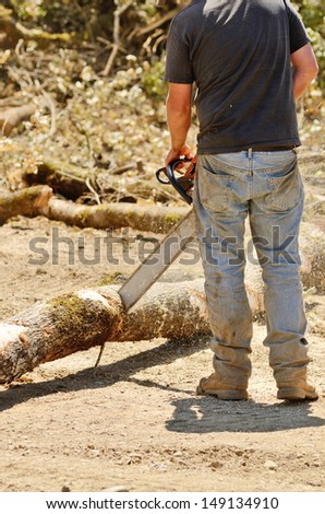 Logger trimming and delimbing oak trees at a new commercial construction development