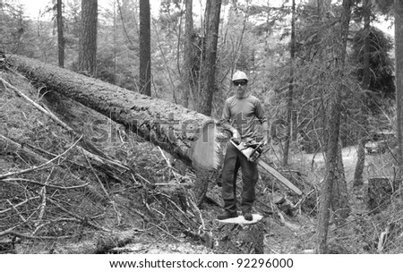 Logger With Cut Tree - stock photo