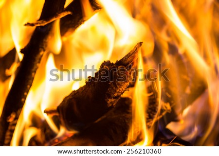 logs burning in the fireplace - stock photo