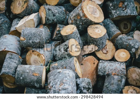 Logs of wood background - stock photo