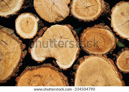 logs stacked timber trunks round - stock photo