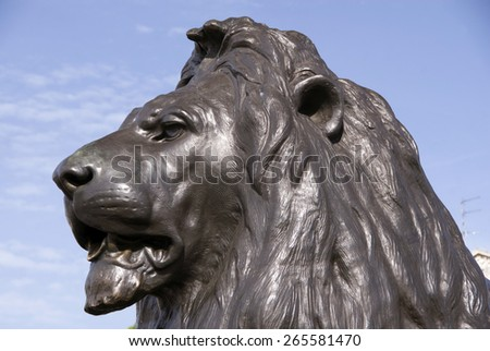London 21 Aug 2013 : Close up on the head of one of the lion statues of Trafalgar Square, London - stock photo