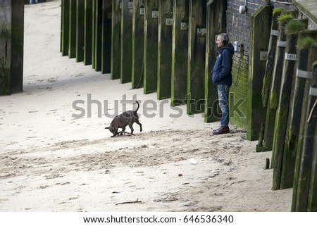 LONDON, ENGLAND - March 12, 2017 A man is listening to music on headphones. The dog rushes along the sandy beach at low tide. South bank of the Thames