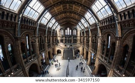 LONDON, UNITED KINGDOM - November 2; Natural History Museum interior in London, United Kingdom - November 2, 2014; Famous London Natural History Museum big hall interior with tourists visitors - stock photo